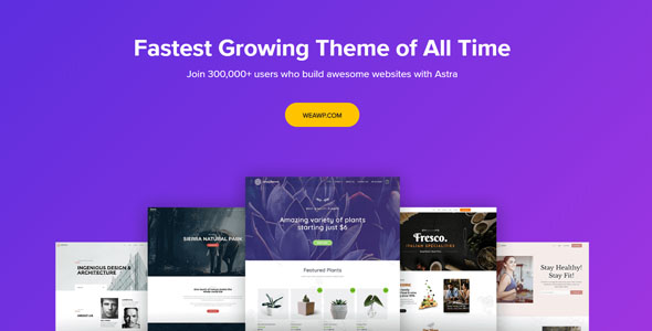 Astra-Pro-Customizable-WordPress-Theme-for-Any-Website